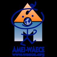 Noticias AMEI-WAECE